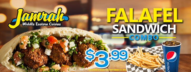Falafel Sandwich Combo Special