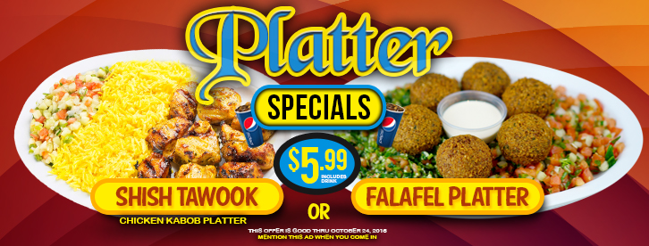 Shish Tawook and Falafel Platter